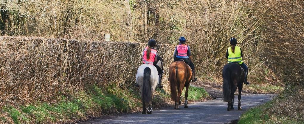 rider_insurance