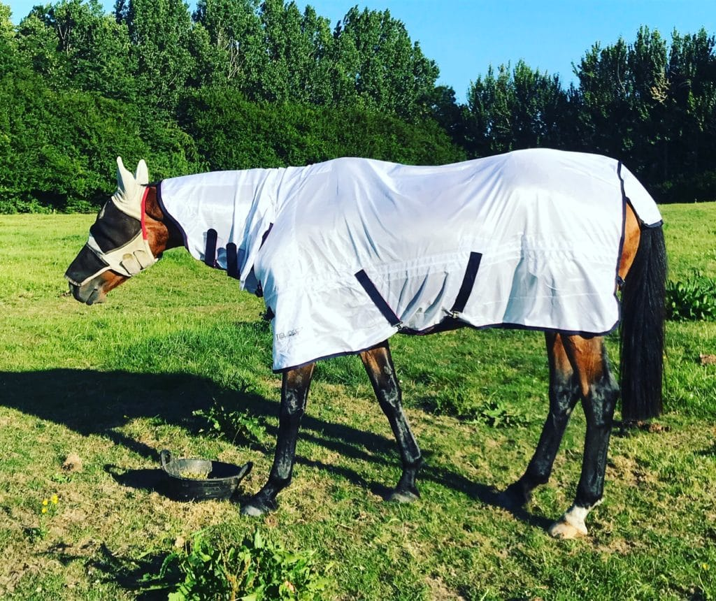 John sporting his new fly rug