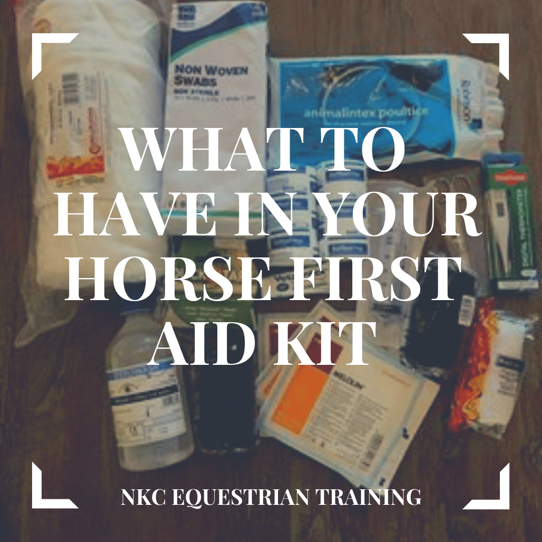 What to have in your horse first aid kit