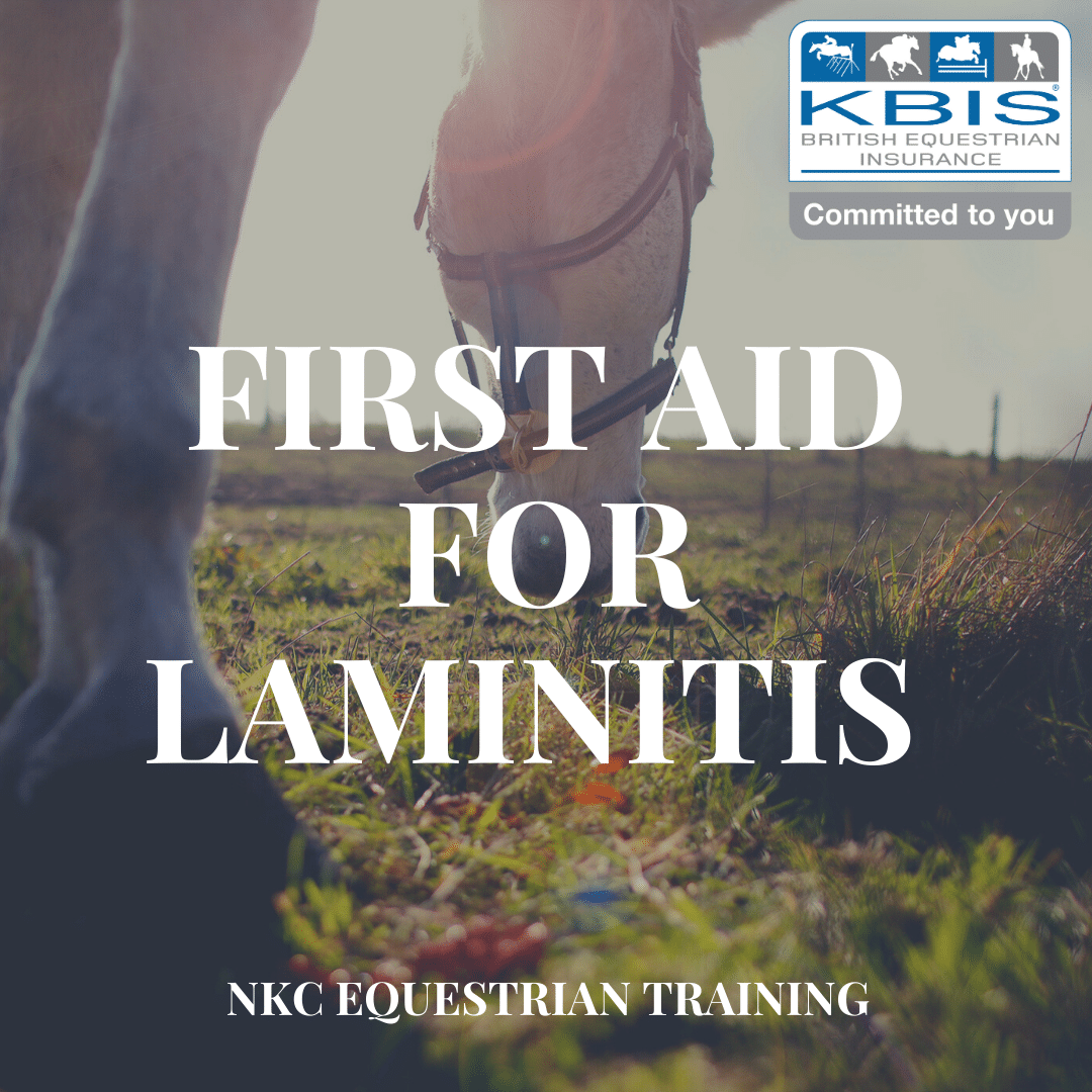 First Aid for Laminitis