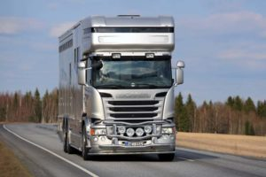 transporter horse insurance