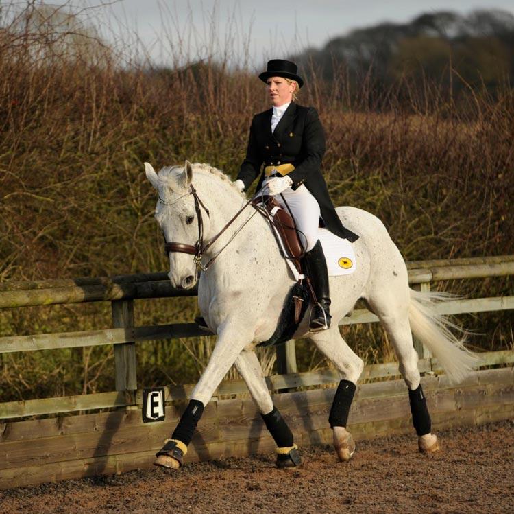 lindsay wilcox-reid rider